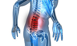 back pain in the lower back
